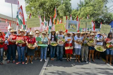 Grito da Terra Pernambuco (foto: Diário de Pernambuco)