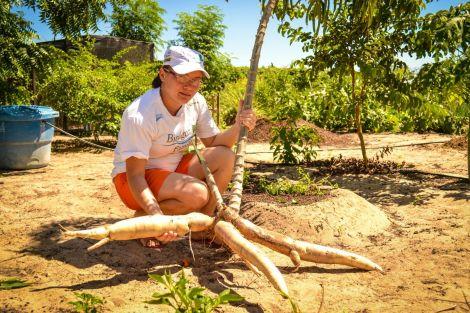 Agricultora Sergilândia do Assentamento Nova Morada-Caraúbas-RN colhendo alimentos produzidos no SBF.